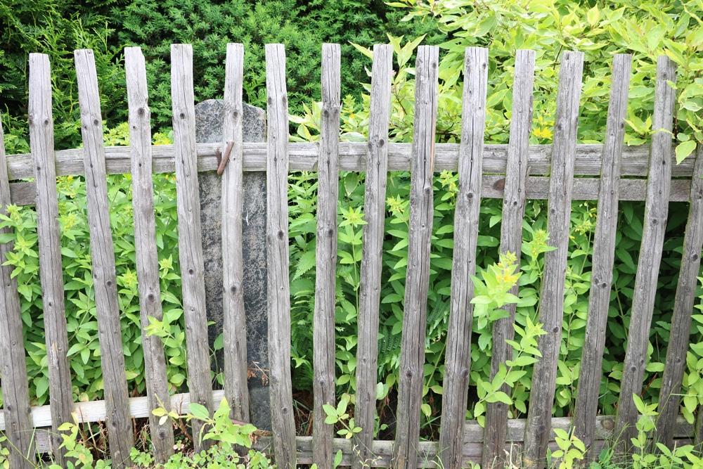 Gartenzaun - Nutzgarten anlegen