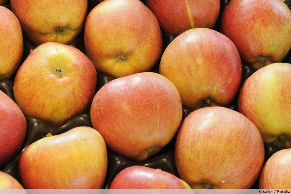 Apfelsorte Breaburn