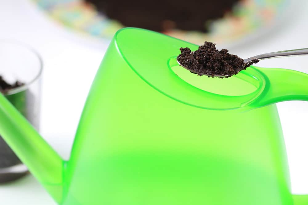 Kaffeesatz gießen