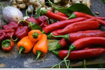 diverse Chili