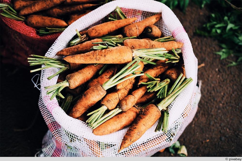 Karotten Sack