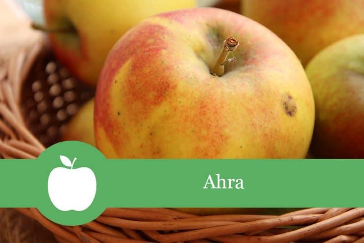 Ahra - Apfelsorte