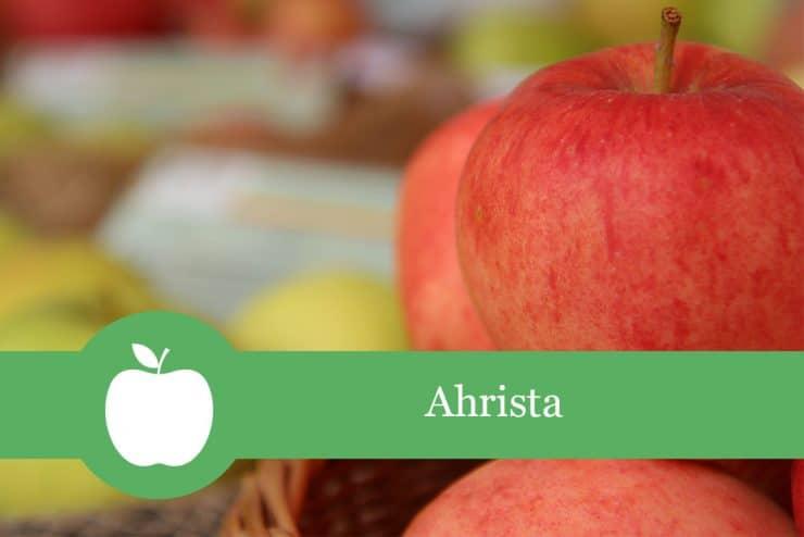 Ahrista - Apfelsorte