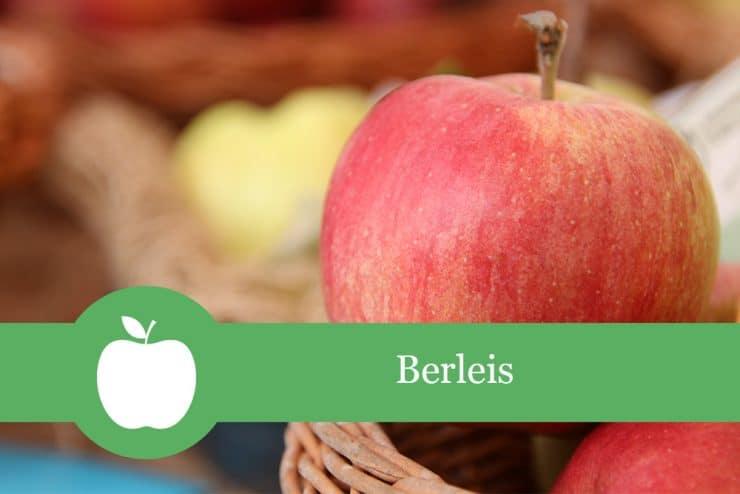 Berleis - Apfelsorte