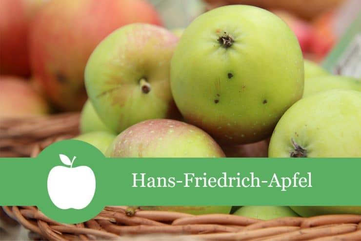 Hans Ulli Apfel