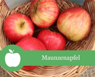 Maunzenapfel