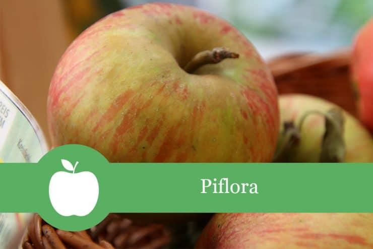 Piflora