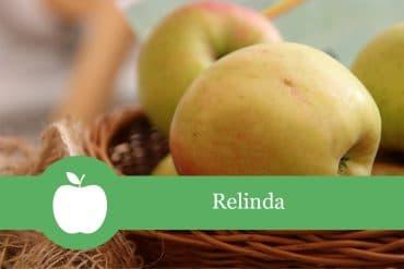 Relinda