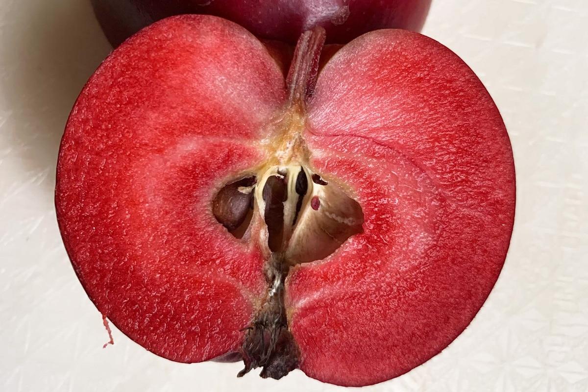 Apfelsorte: Redlove